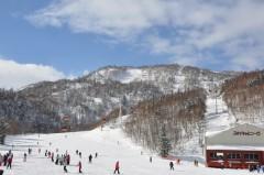 国際スキー場山麓から